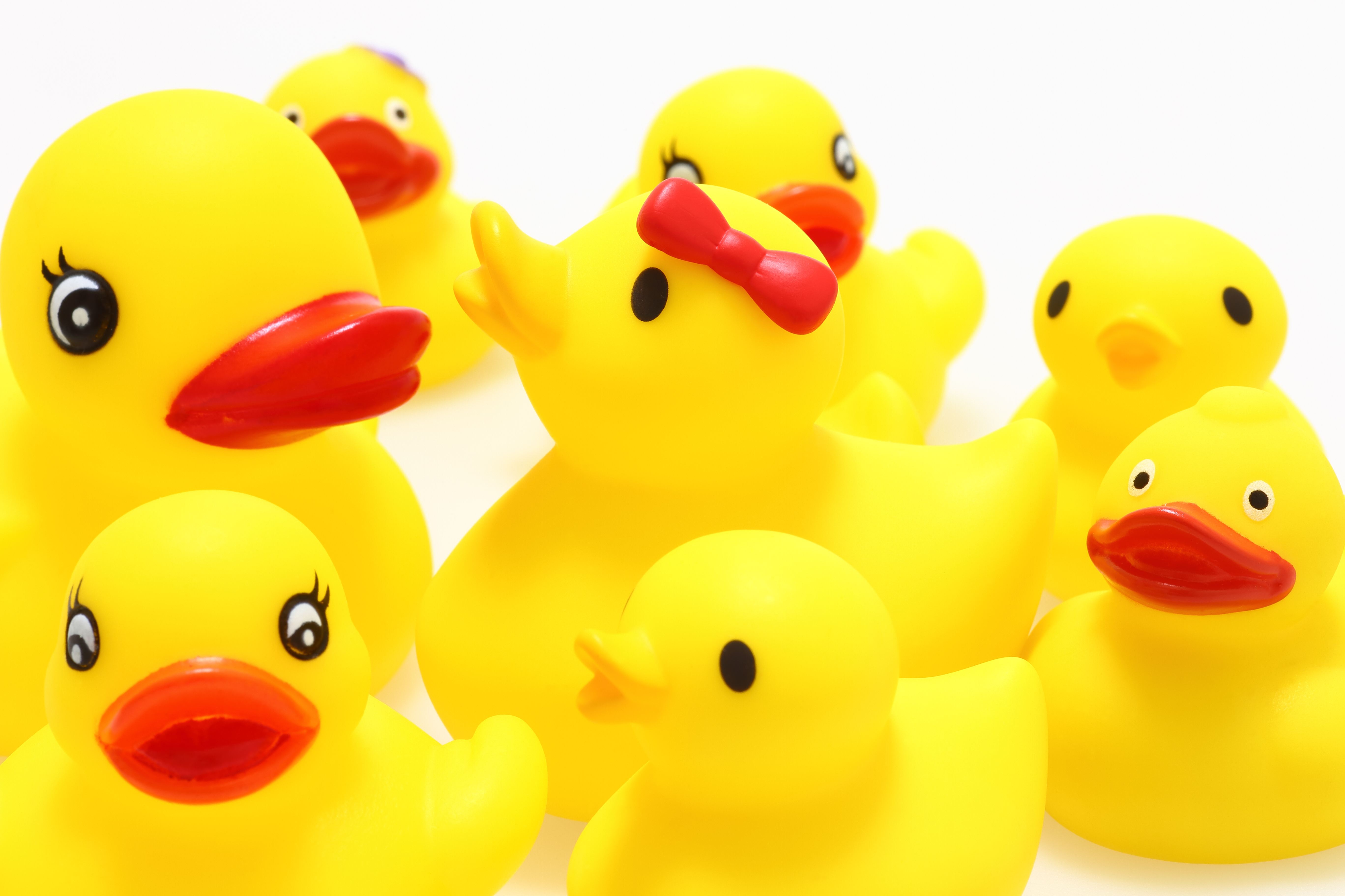 Today Is National Rubber Ducky Day And Quot Hamilton S