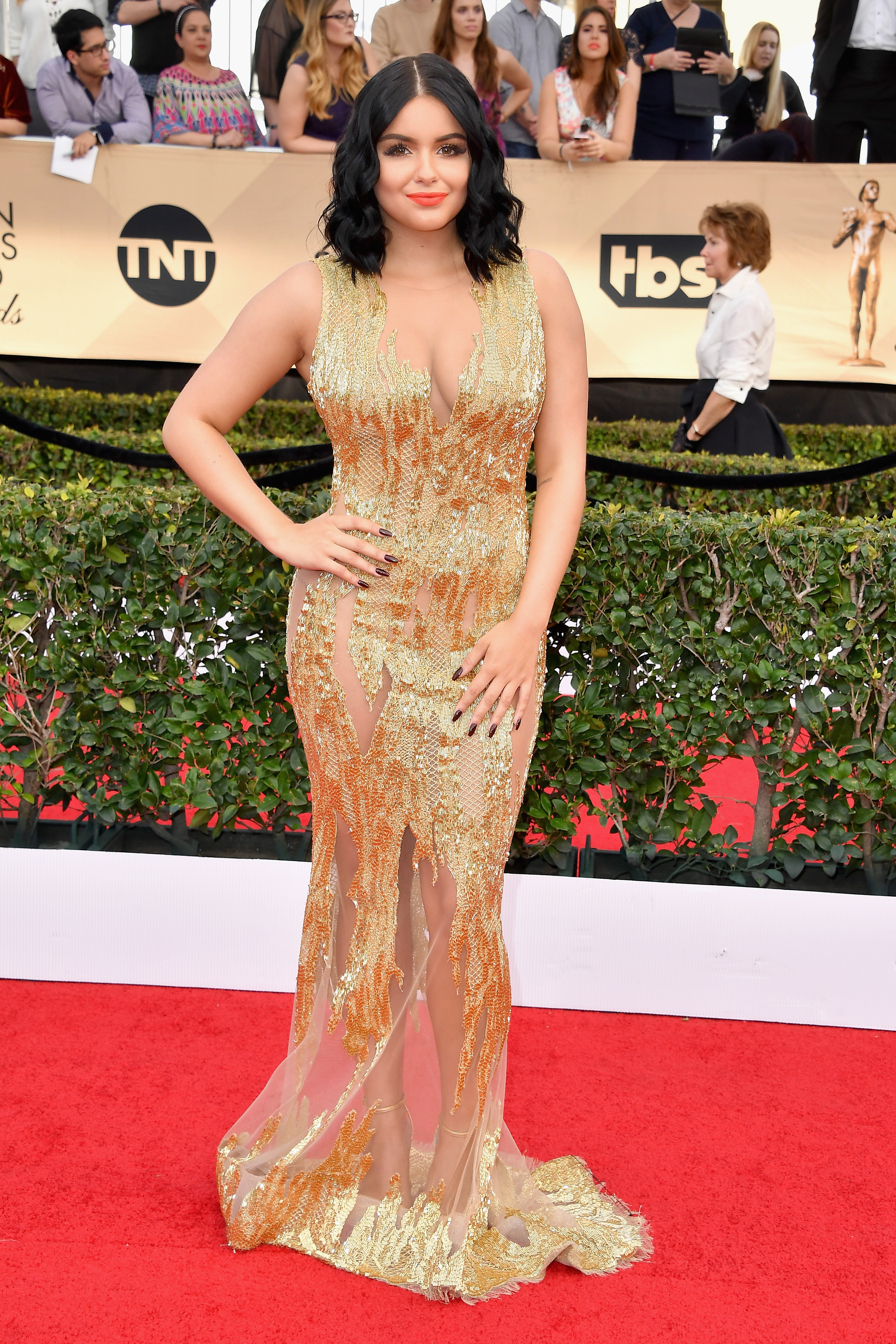Ariel Winter Wore A Sag Awards Dress That Makes It Look