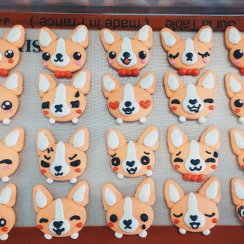 This bakery makes the kind of adorable macarons we dream about