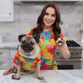 You can learn how to make pug cupcakes with Doug the Pug, because there's nothing he can't do