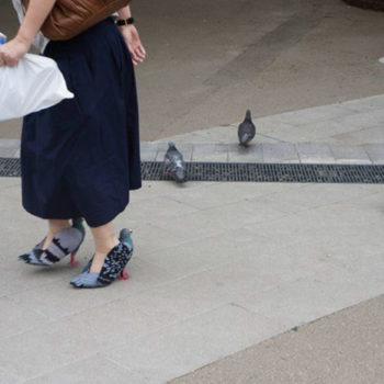 These pigeon shoes are definitely a niche fashion choice