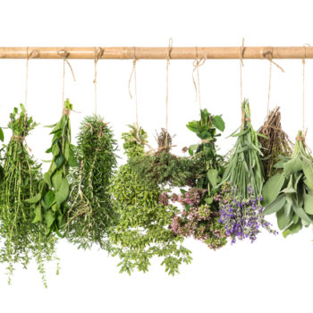 It's National Gardening Week, so let's honor these 13 herbs with healing properties