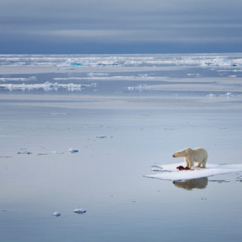 Scientists are warning that we only have three years left to prevent a climate disaster — and here's what they propose we do about it
