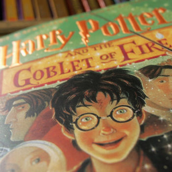 "People are still obsessively reading ""Harry Potter,"" and, like, of course!"
