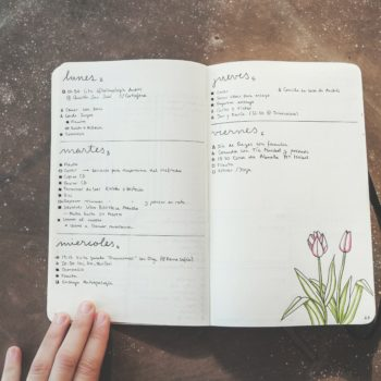 This new book about dot journaling will actually help you get your life together