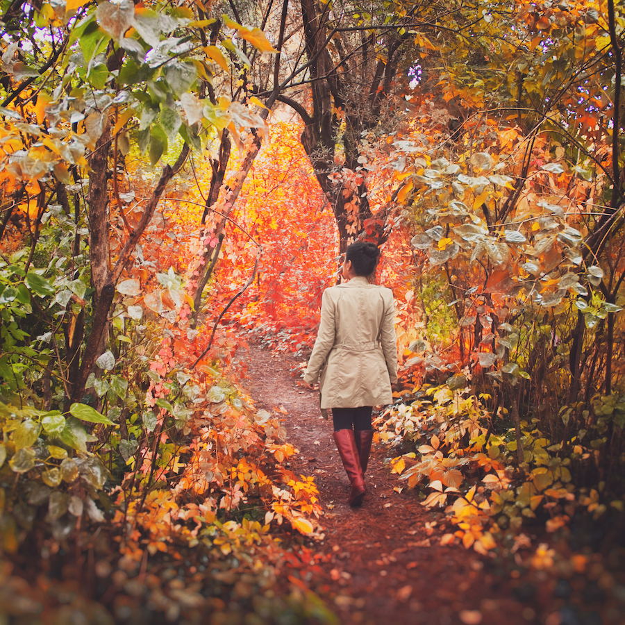The autumn equinox is asking you to find balance as we move into the dark