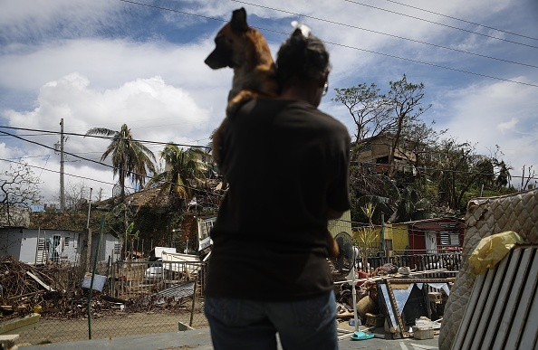 Federal regulations are forcing residents leaving Puerto Rico to abandon their pets or not leave at all