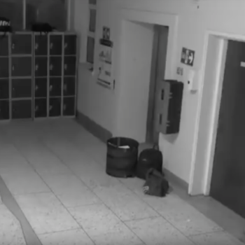 This school continues to catch ghosts on camera, and we need to form a calming circle