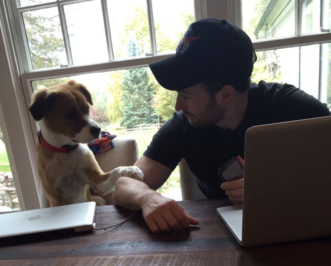 This video of Chris Evans' dog singing will be the best 90 seconds of your day