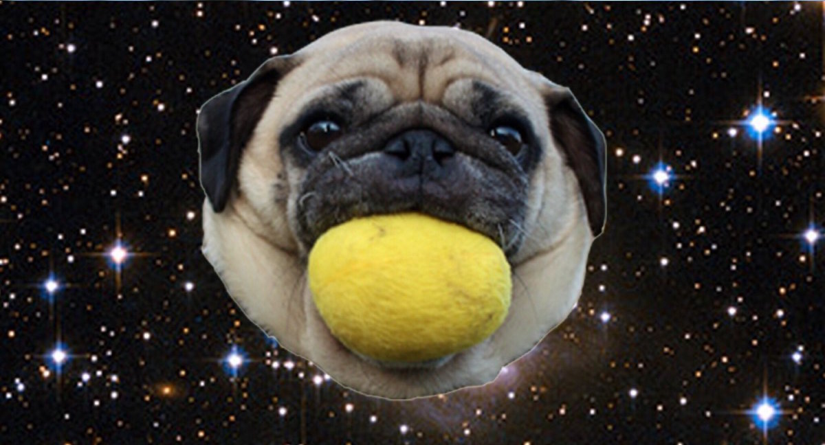 This Chrome extension swaps out Harvey Weinstein's face with pugs in space, so sometimes the internet is pretty great