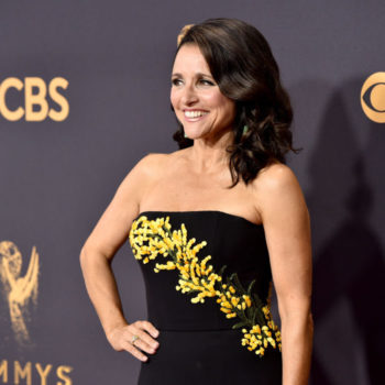"""Veep"" production has been delayed while Julia Louis-Dreyfus undergoes breast cancer treatment"