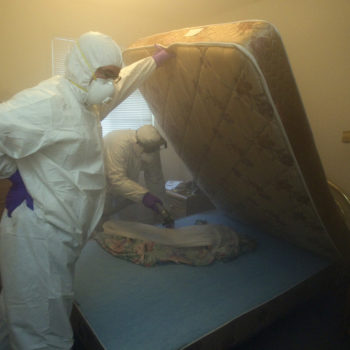 A teenager tried to kill some bed bugs but set his entire apartment complex on fire instead