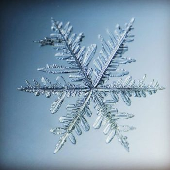 These gorgeous close-up photos of snowflakes will give you a newfound appreciation for winter