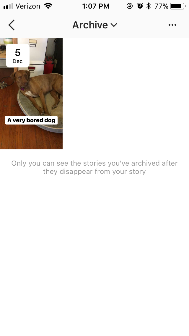 How to use instagram story highlights the feature that lets you madison vanderberg hellogiggles ccuart Choice Image
