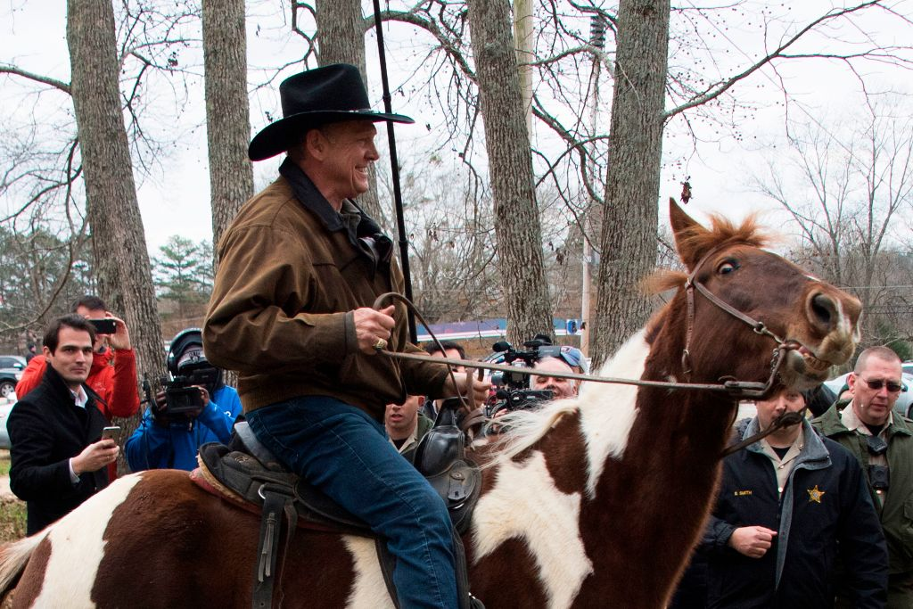 Roy Moore's horse has its own Twitter and it's a satirical dream