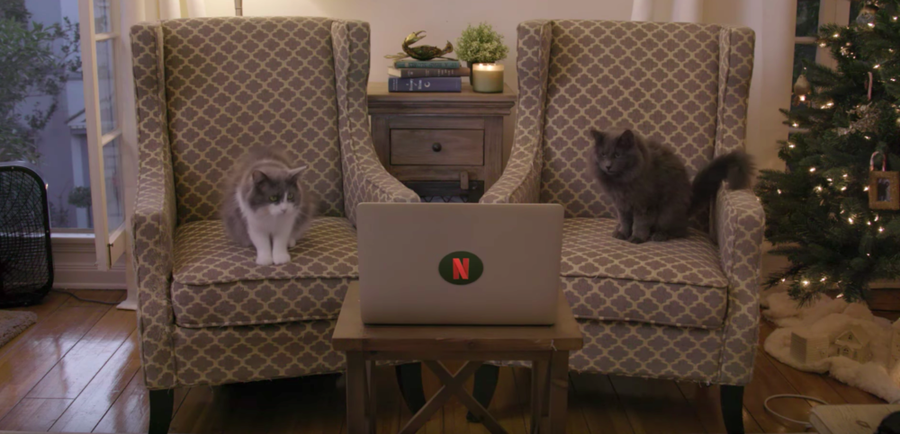 "Netflix released a video of cats watching THAT Mews scene in ""Stranger Things"""