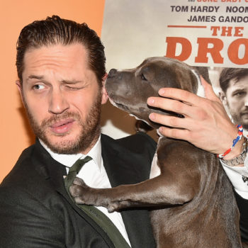 Tom Hardy is now helping dogs find their forever homes, because he's a very good dude