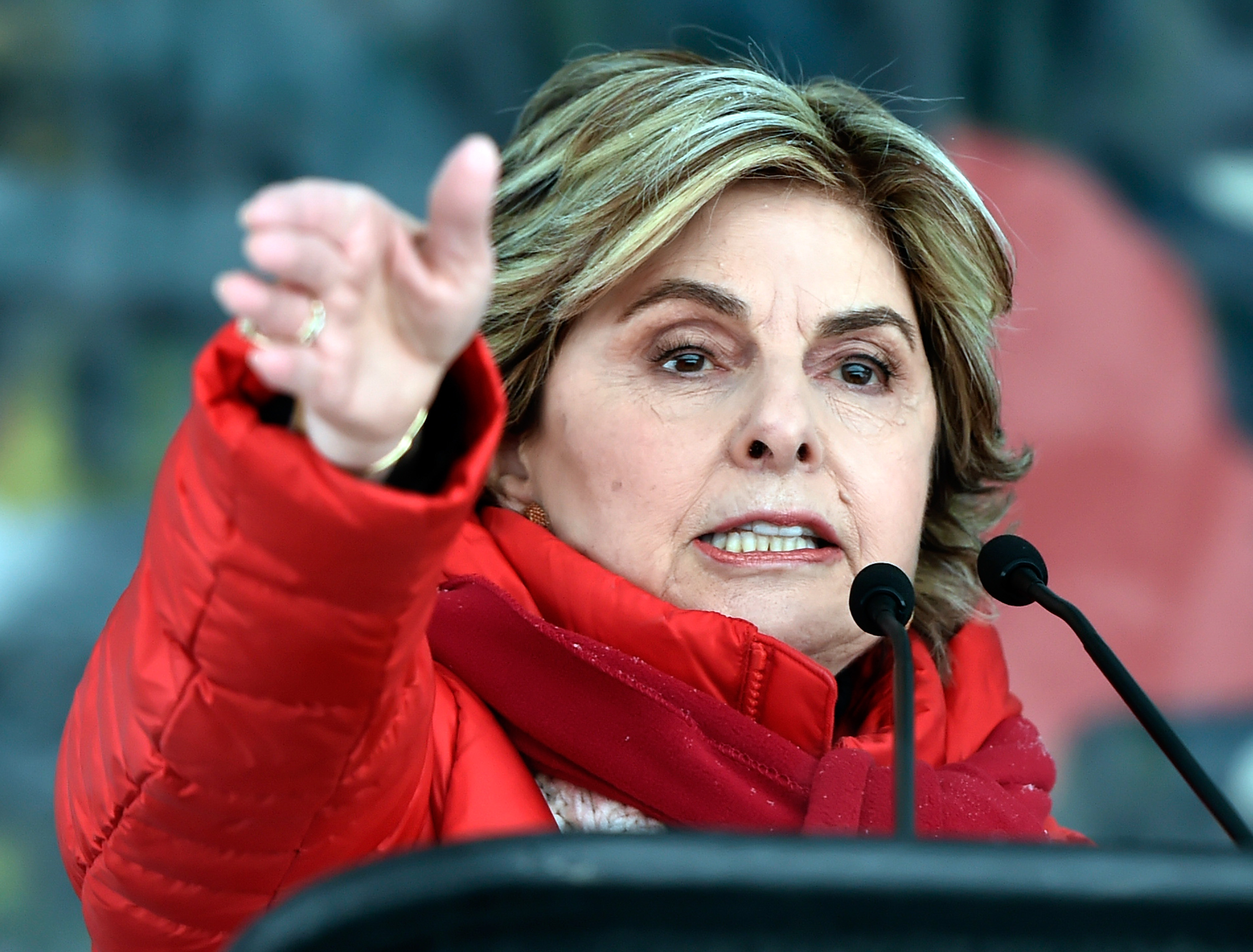 Gloria Allred resurrected the Equal Rights Amendment at the 2018 Women's March