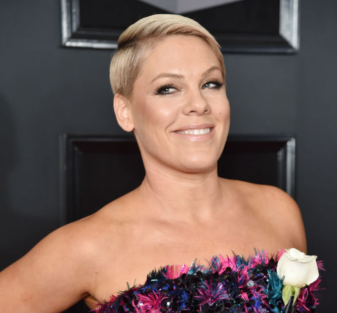 "Pink wore only a white tee and jeans during her powerful ""Wild Hearts Can't Be Broken"" Grammys performance"