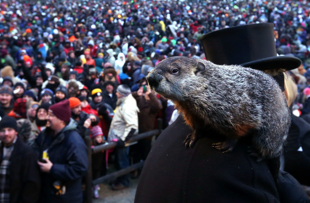 What it means when the groundhog sees his shadow — because we forget every year