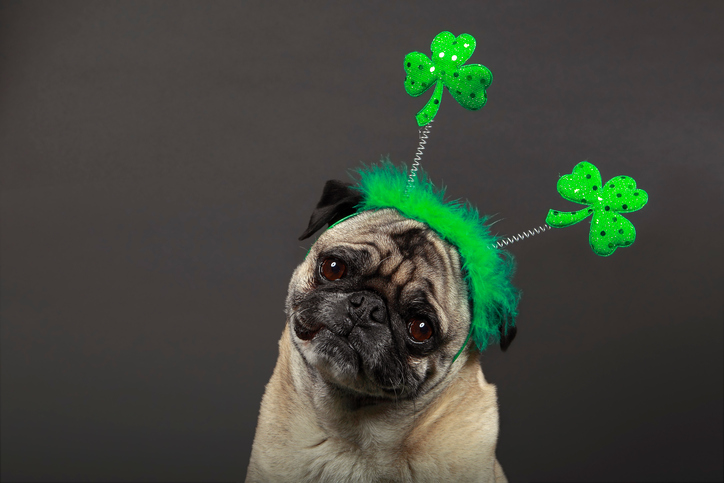 When is St. Patrick's Day? It falls on a weekend this year