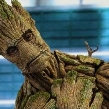 "Allow James Gunn to shatter your heart: The original Groot is ""dead"""