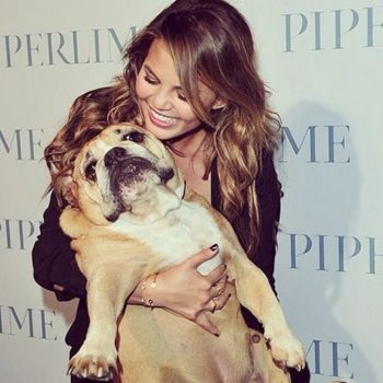 "Chrissy Teigen used her dog's death to savagely shame her friends, because it's ""what Puddy would have wanted"""