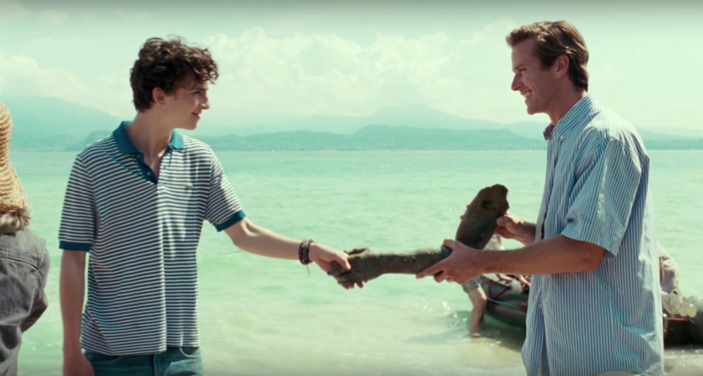 """Call Me By Your Name"" is getting a sequel, and Twitter has jokes about its name"