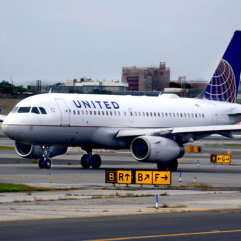 A dog died on a United Airlines flight, and we want justice for Kokito
