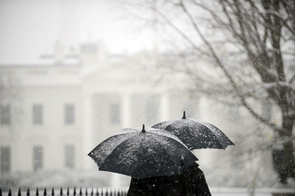 So how much snow can Washington D.C. *really* expect from Winter Storm Toby today?