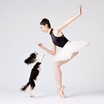 To combat the idea that ballet is stuffy, this photo project features dancers and their doggos