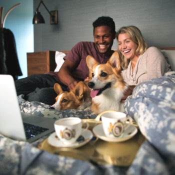 A new Netflix study reveals people prefer binge-watching with pets, and our puppies approve of these findings