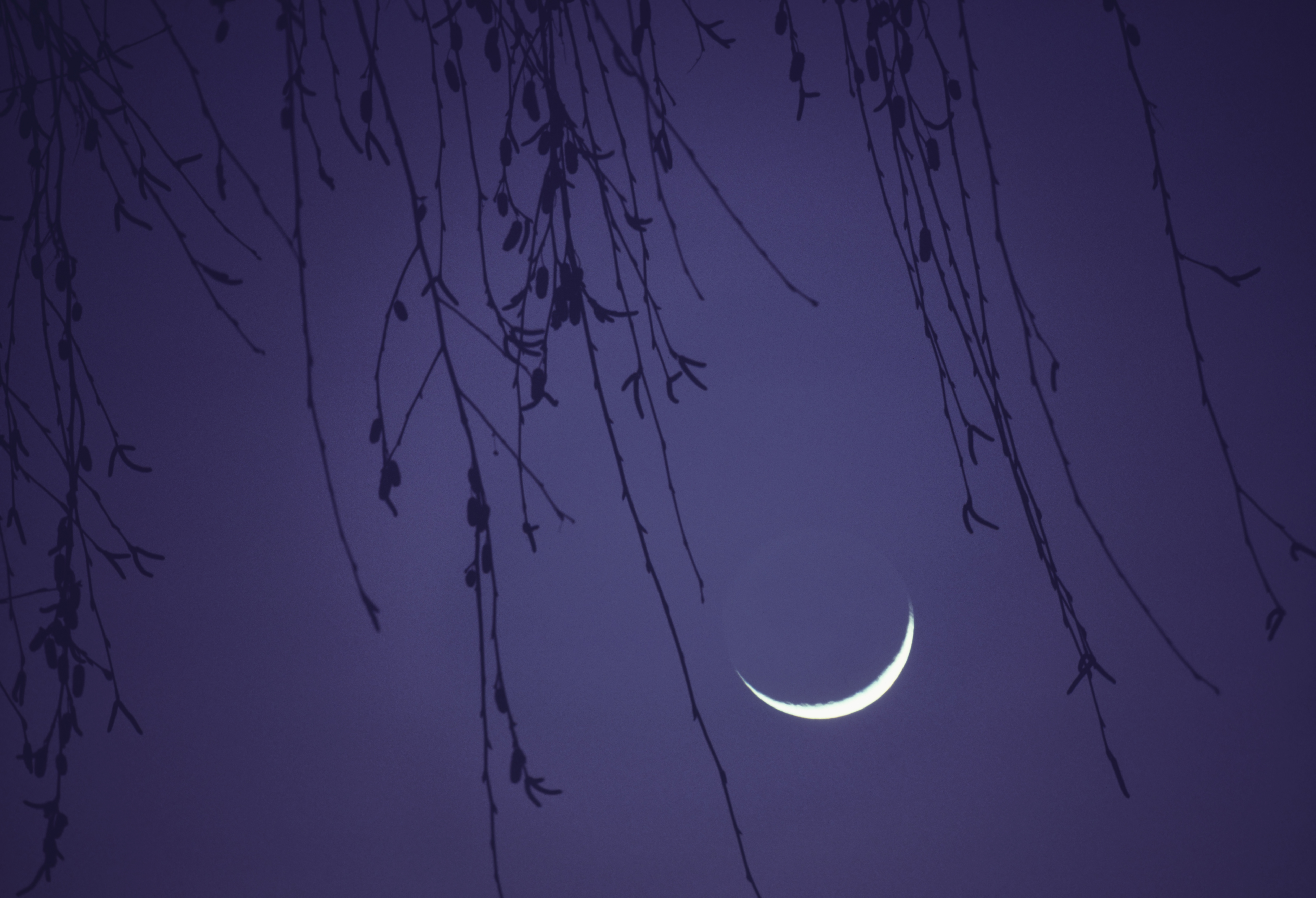 These are the Aries New Moon effects we should look out for this weekend
