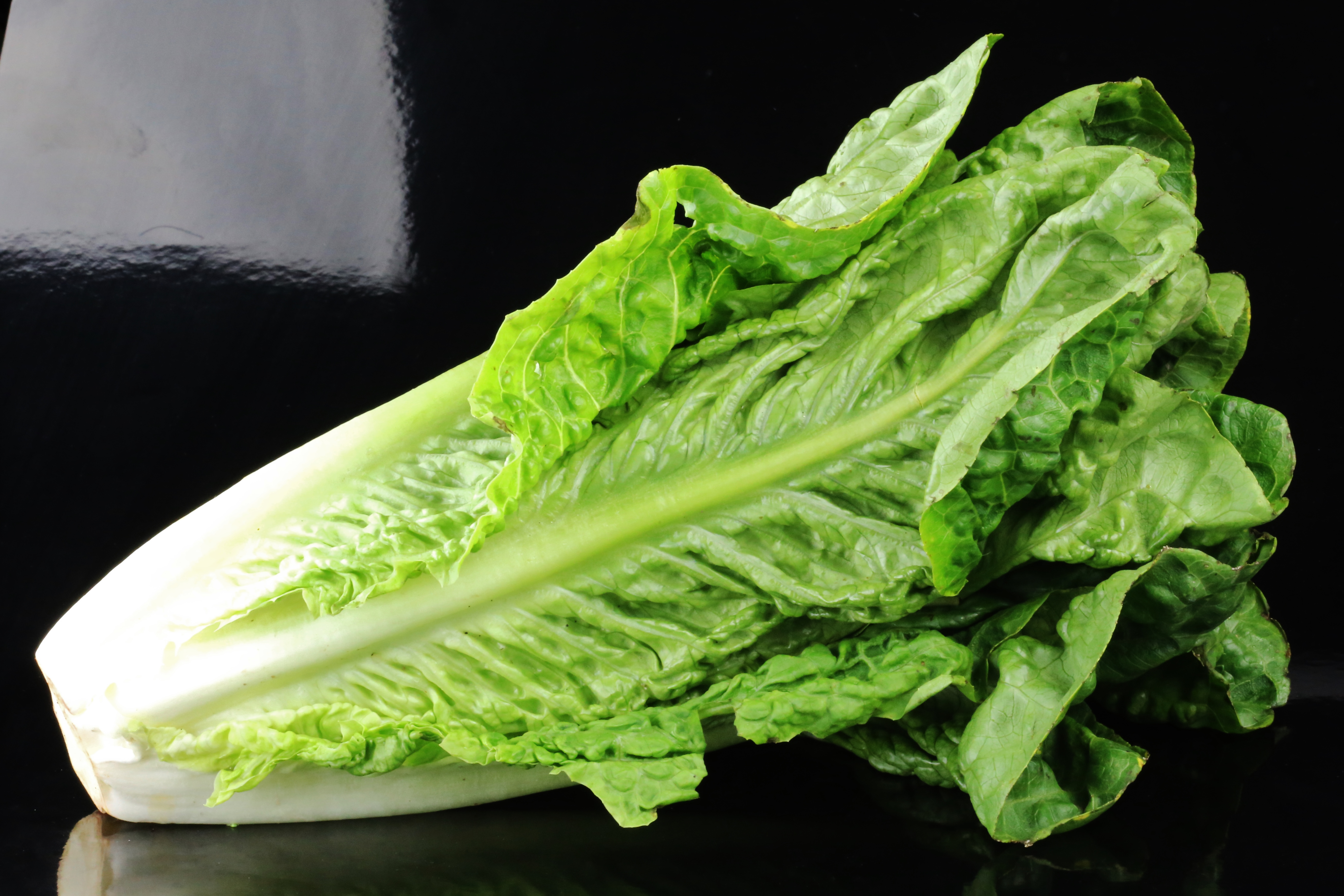 People in 11 states have gotten sick from romaine lettuce tainted with E. coli — here's how to stay safe