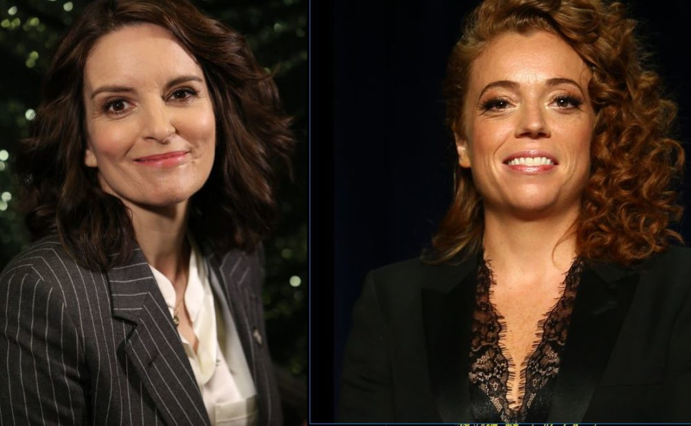 Tina Fey defended Michelle Wolf with the most perfect observation