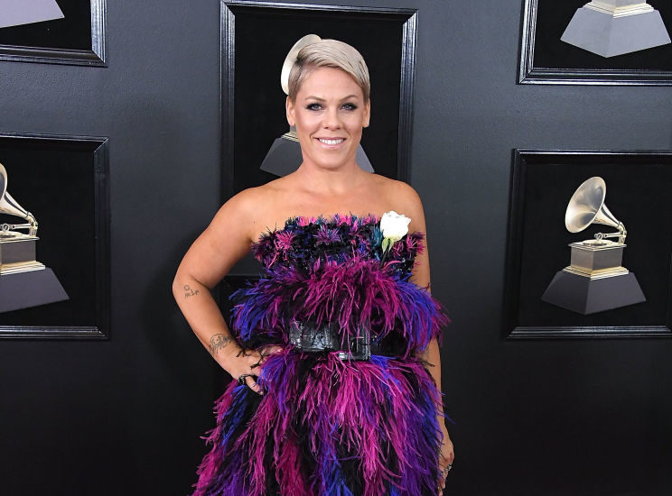 """Pink deserves an award for her response to a """"little purple troll"""" who age-shamed her on Twitter"""