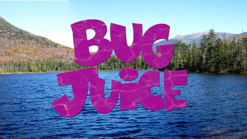 Disney Channel just set the premiere date for its <em>Bug Juice</em> revival — and it's right around the corner