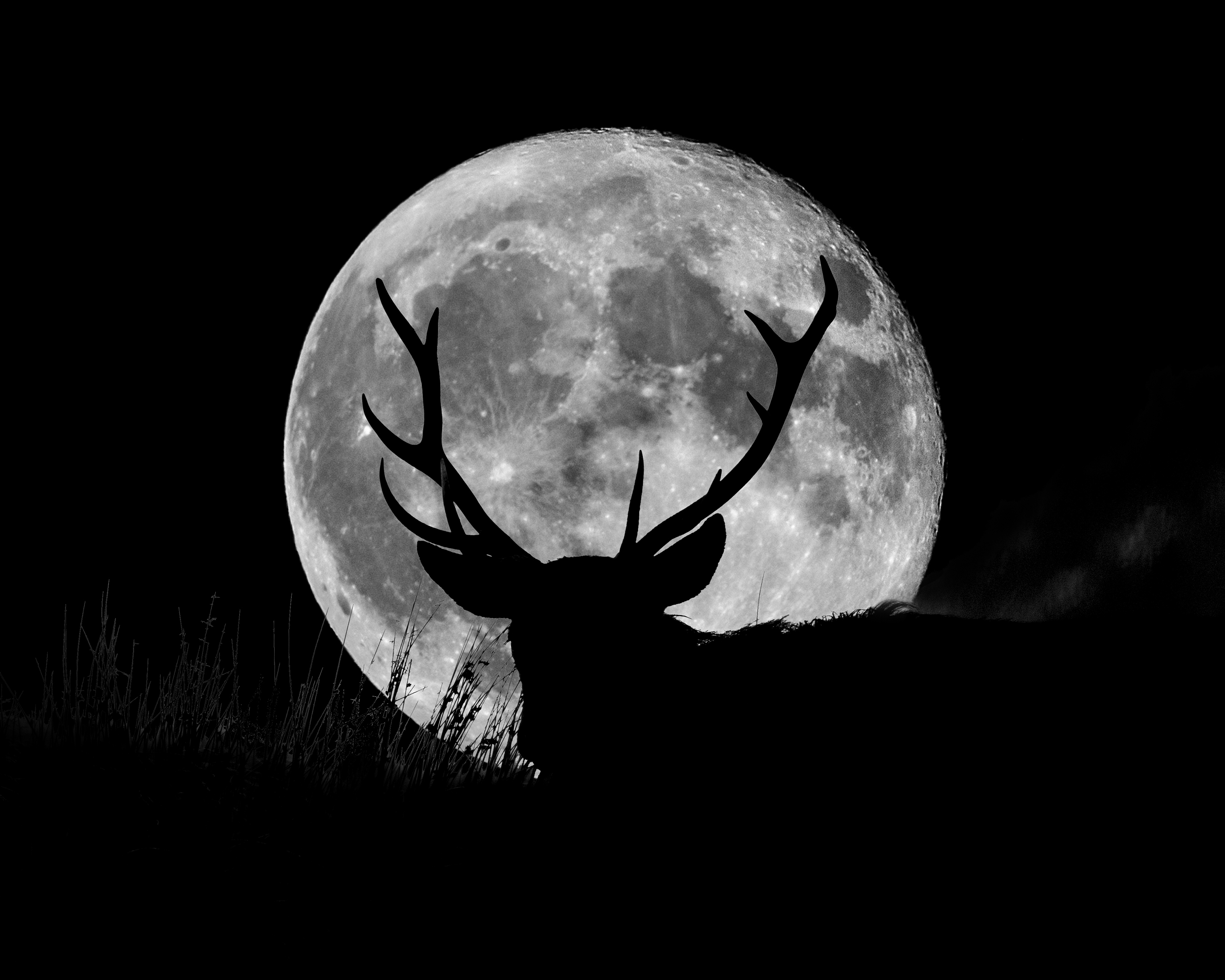 Here's How July's Full Buck Moon Will Affect Your Zodiac sign