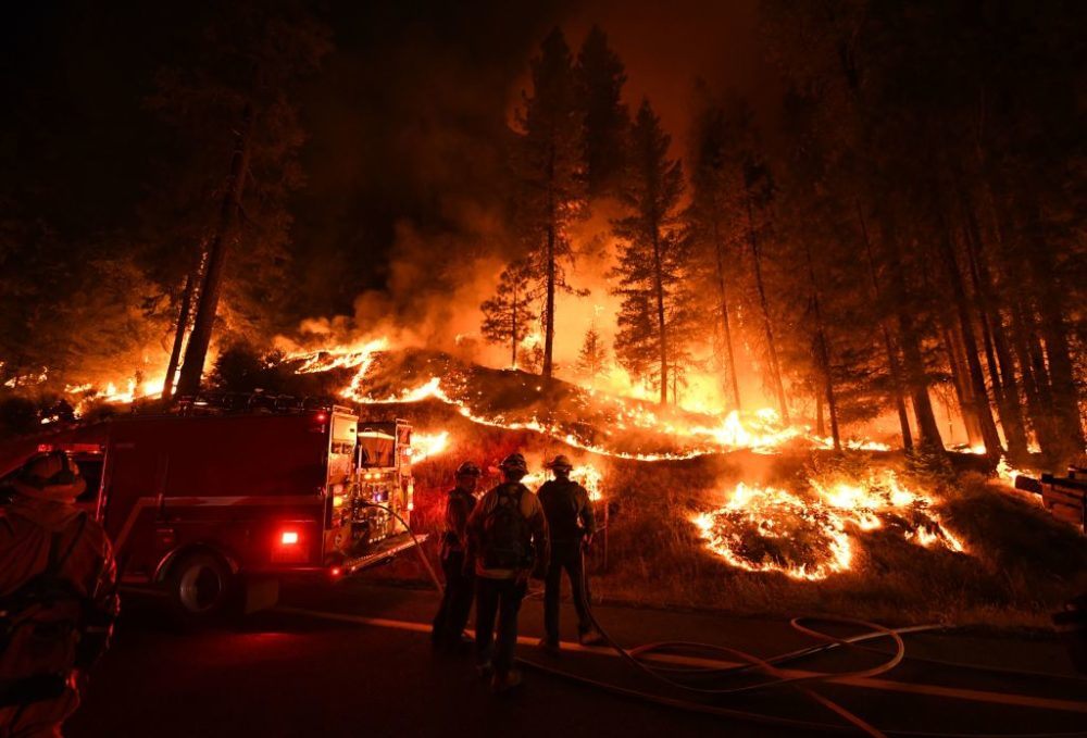 A Trump official suggested cutting down trees to stop the California wildfires