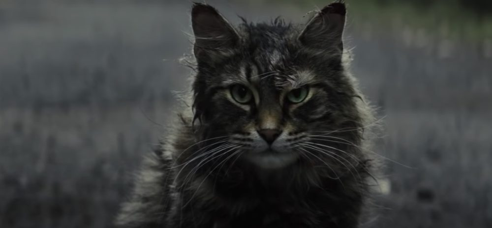 The new <em>Pet Sematary</em> trailer is here, and it will seriously stress you out