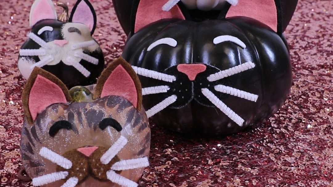 These DIY cat pumpkins are the most purrfect way to decorate for Halloween