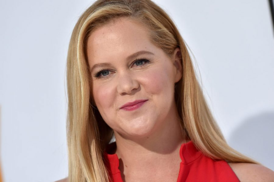 "Amy Schumer had the best response to a commenter who asked how she'd ""cope"" if her son has autism like his dad"