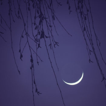Tonight's New Moon in Scorpio will force us to break ourselves open and start new