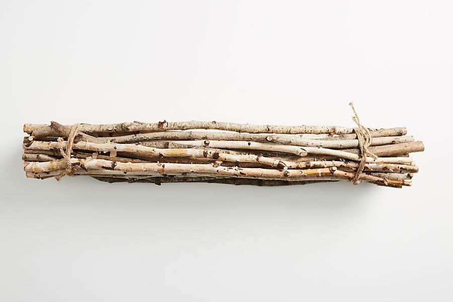 Anthropologie is literally selling a bundle of twigs for $42, and Twitter can't handle it
