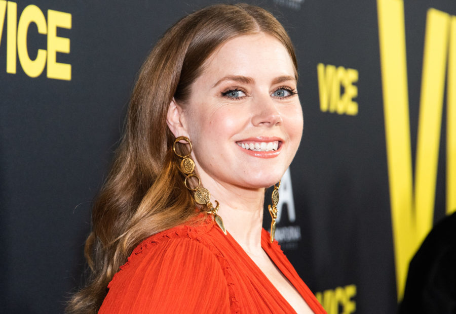 Amy Adams once rejected a hug from Brad Pitt for a very good reason