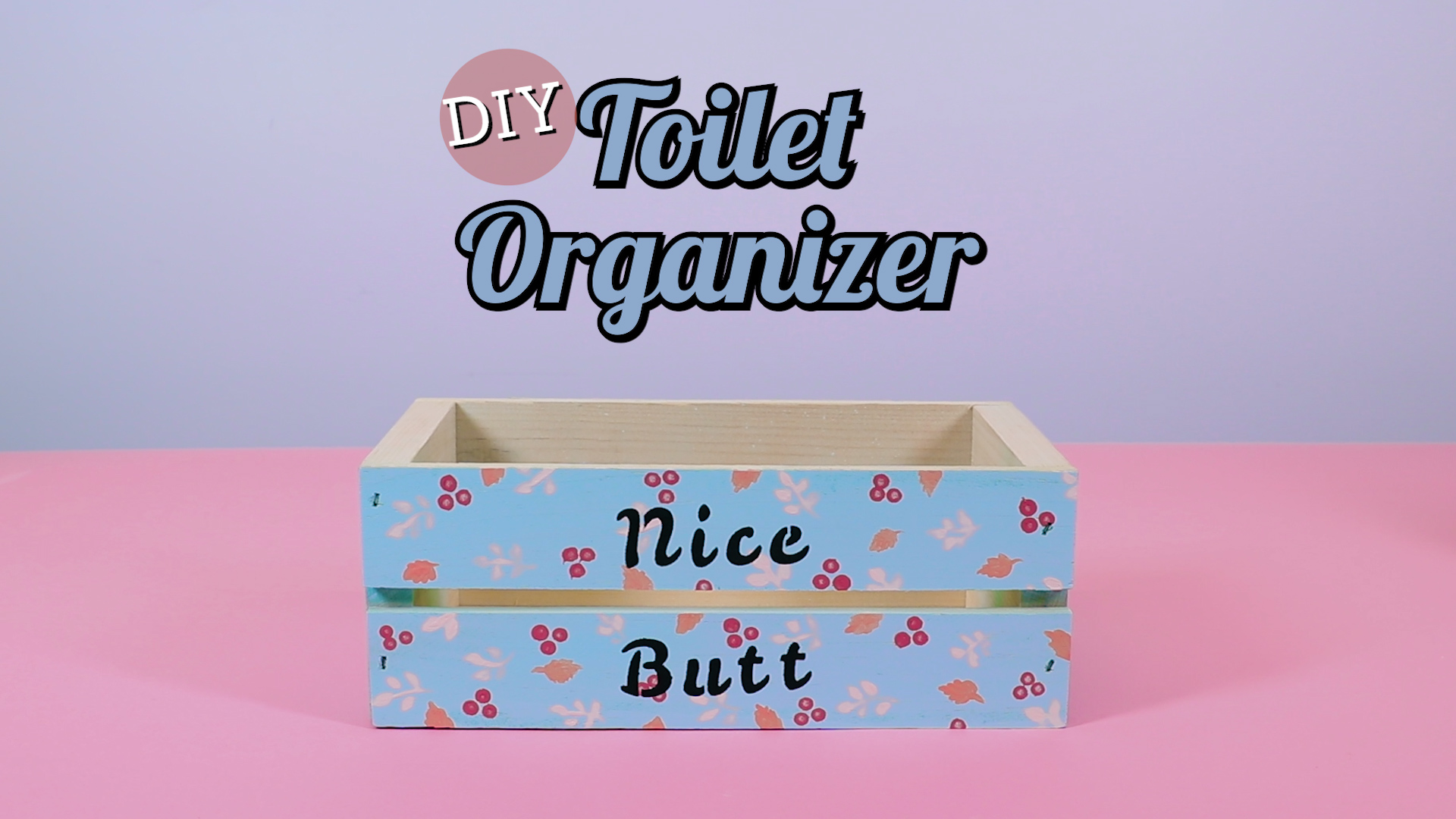 Every bathroom needs this cheeky DIY toilet organizer