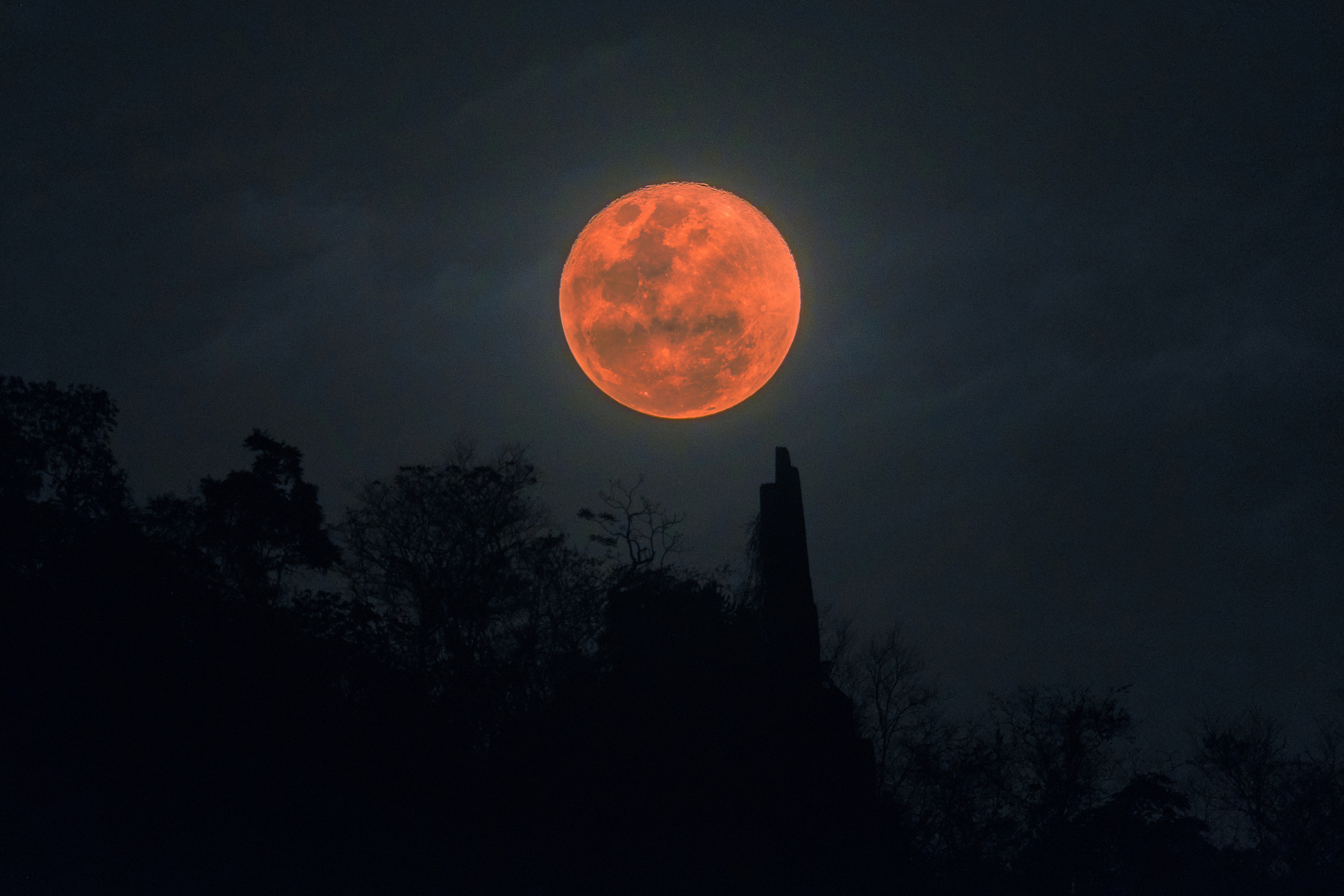 super blood moon january 2019 horoscope - photo #24