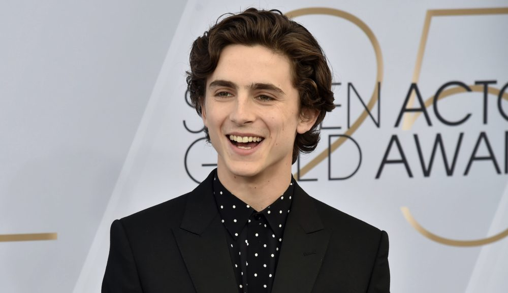 Timothée Chalamet was caught reading at the SAG Awards, and the internet is obsessed