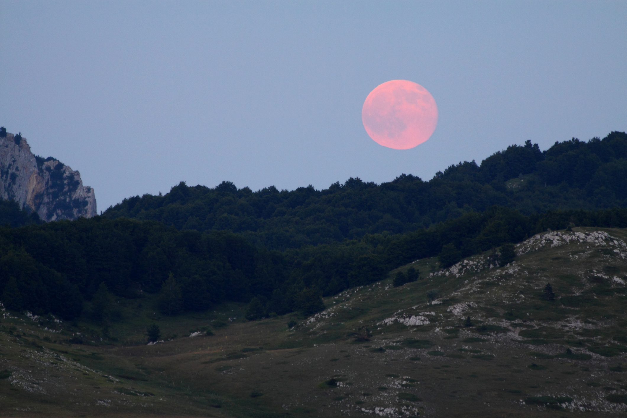 This week's Full Pink Moon will give your friendships a huge boost