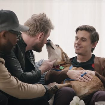 "The <em>Queer Eye</em> guys doing a ""makeover"" on this rescue dog will make you sob tears of joy"